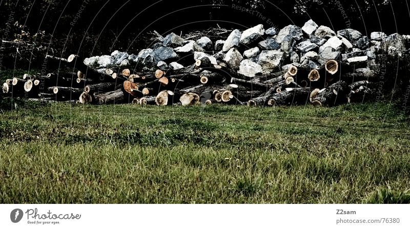 raw material Natur weiß grün Wald Wiese Berge u. Gebirge Holz Stein braun Felsen Baumstamm Haufen Säge