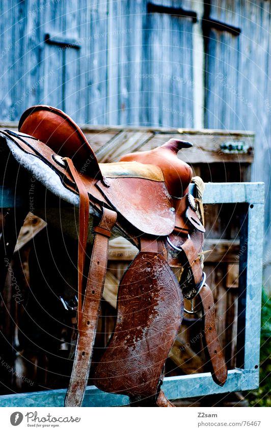 pferdesattel Pferd Leder Tier Scheune Holz braun Aluminium Sitzgelegenheit horse Reitsport animal sitzen Farbe Tor Metall Sattel