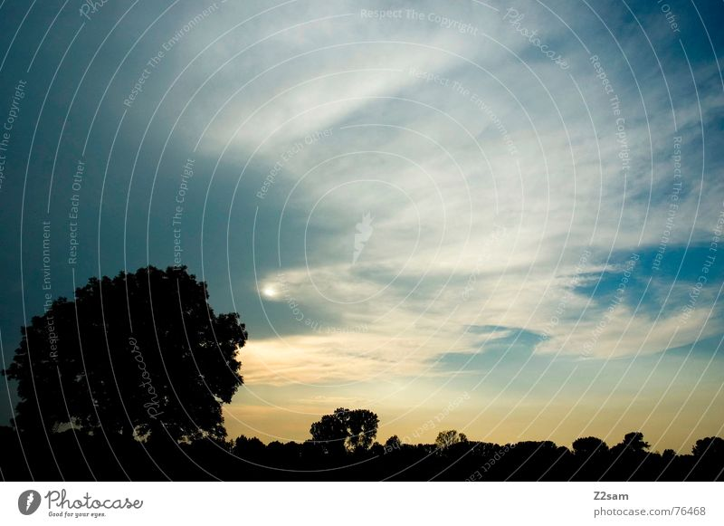 sommernachts kitsch Sommer Nacht Sonnenuntergang gelb Himmel Wolken Gegenlicht Kitsch Abend Natur lanschaft landscape blue blau sky clouds