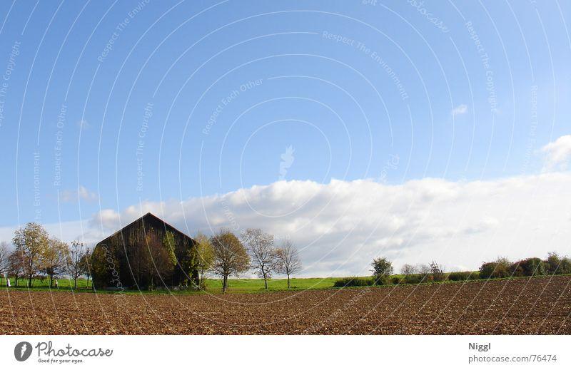 Last House On The Left Haus Scheune Holz Spaziergang Herbst Feld Landwirtschaft Wolken Hütte Himmel blau Landschaft Ferne Schönes Wetter niggl