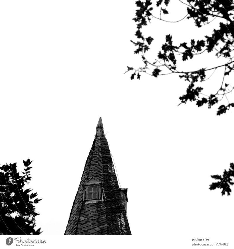 Spitze mit Fenstern Kirchturm Baum Blatt schwarz weiß Eiche Religion & Glaube Kloster wennigsen Kontrast dachhäuschen blitzableiter Neigung
