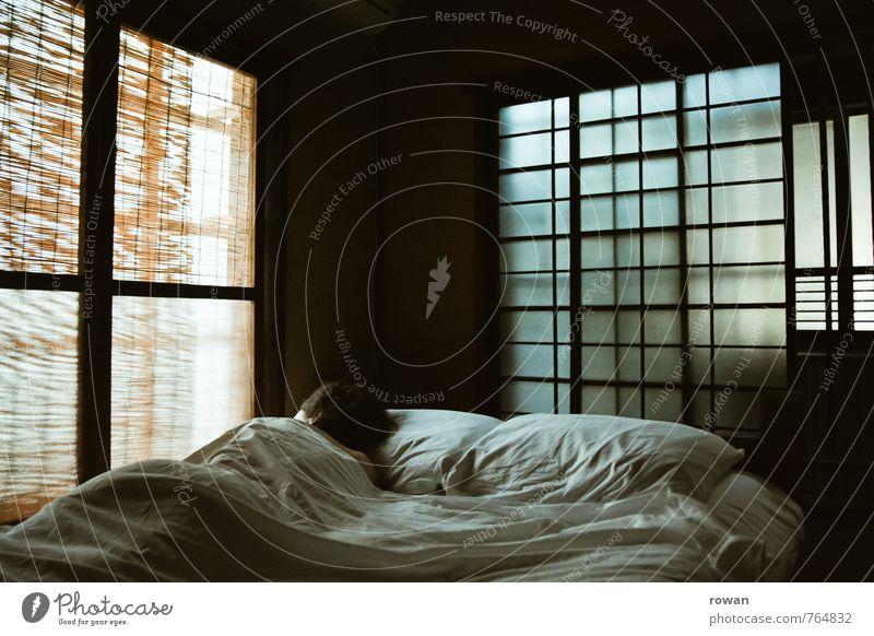 6 uhr morgens Mensch Frau Jugendliche Einsamkeit Junge Frau Erholung ruhig Erwachsene Fenster feminin liegen Wohnung Raum Häusliches Leben einzeln schlafen
