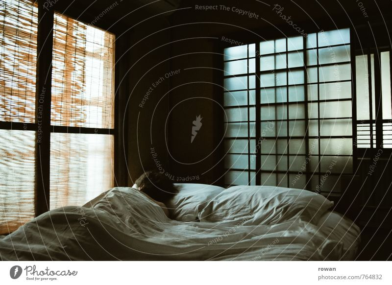 6 uhr morgens Wohlgefühl Erholung ruhig Häusliches Leben Wohnung Raum Schlafzimmer Mensch feminin Junge Frau Jugendliche Erwachsene 1 Fenster liegen schlafen