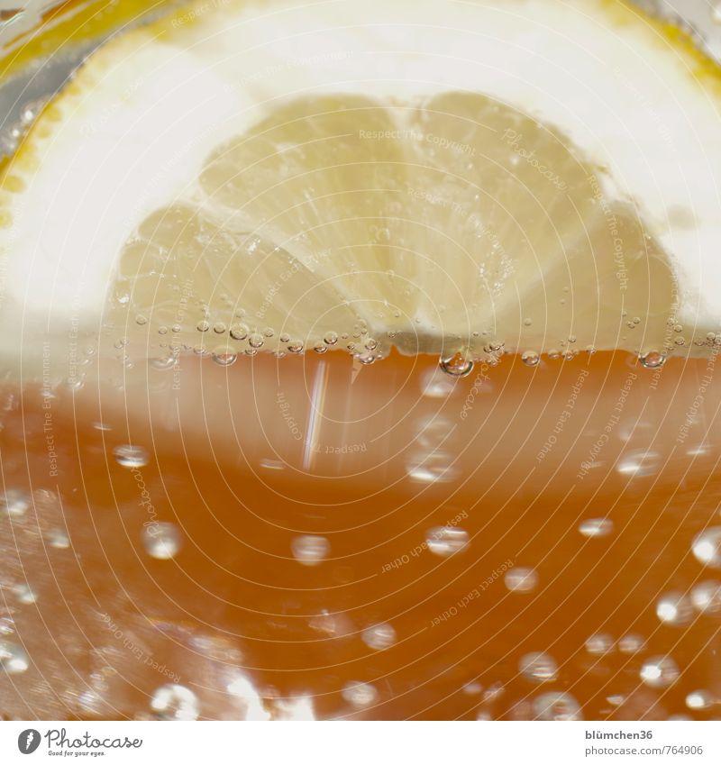Wasser mit Geschmack Zitronenscheibe Getränk trinken Erfrischungsgetränk Trinkwasser Kohlensäure einfach Flüssigkeit Gesundheit kalt natürlich gelb