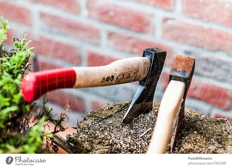 """Die Axt im Walde Freizeit & Hobby Garten Landwirtschaft Forstwirtschaft Umwelt Natur Baum Bewegung """"Holz,"""" hacken Holzfäller Baumstamm Muskulatur Kraft Farbfoto"""