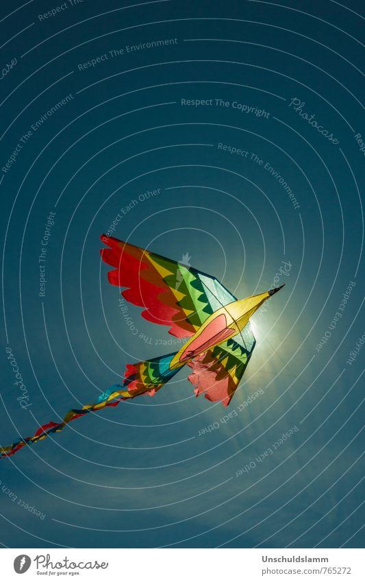 Sonnenvogel Freizeit & Hobby Spielen Kinderspiel Lenkdrachen Drachenfliegen Ferien & Urlaub & Reisen Ferne Freiheit Sommer Himmel Sonnenaufgang Sonnenuntergang
