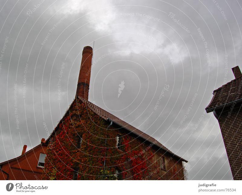 Kornbrennerei II Himmel alt Blatt Wolken Haus Herbst Fenster Gebäude Wein Dorf Backstein Alkohol Schornstein bewachsen Spirituosen