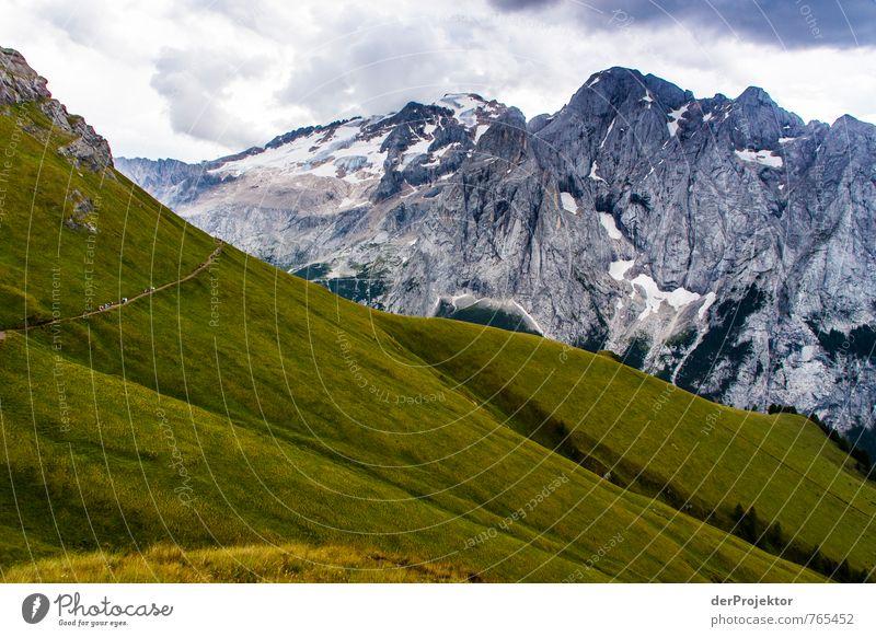 Der Weg ins Graue(n) Natur Ferien & Urlaub & Reisen Pflanze Sommer Landschaft Wolken Ferne Umwelt Berge u. Gebirge Gefühle Wiese Wege & Pfade Gras Freiheit