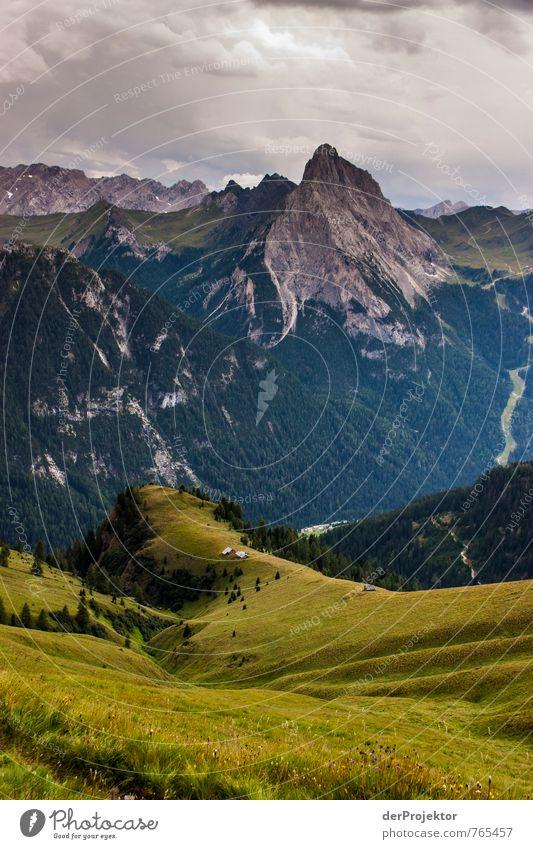 Ausblick genießen in den Dolomiten Natur Ferien & Urlaub & Reisen Pflanze Sommer Landschaft Ferne Umwelt Berge u. Gebirge Gefühle Wiese Gras Freiheit Felsen