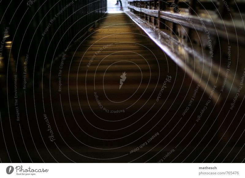 Licht am Treppe Treppenhaus Treppengeländer braun weiß steil dunkel Farbfoto Menschenleer Textfreiraum unten Tag Schatten Schwache Tiefenschärfe