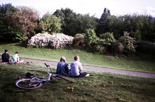 Parklife Mensch maskulin feminin Junge Frau Jugendliche Junger Mann Freundschaft Leben Veranstaltung Open Air Umwelt Natur Sonnenaufgang Sonnenuntergang