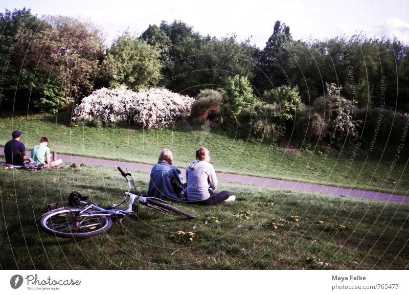 Parklife Mensch Natur Ferien & Urlaub & Reisen Jugendliche Stadt Sommer Junge Frau Erholung Junger Mann Umwelt Leben sprechen Frühling Wiese Wege & Pfade