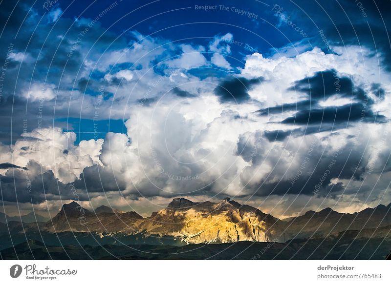 Ein ganzer Berg aus Gold Ferien & Urlaub & Reisen Tourismus Ausflug Abenteuer Ferne Freiheit Berge u. Gebirge wandern Umwelt Natur Landschaft Pflanze Urelemente