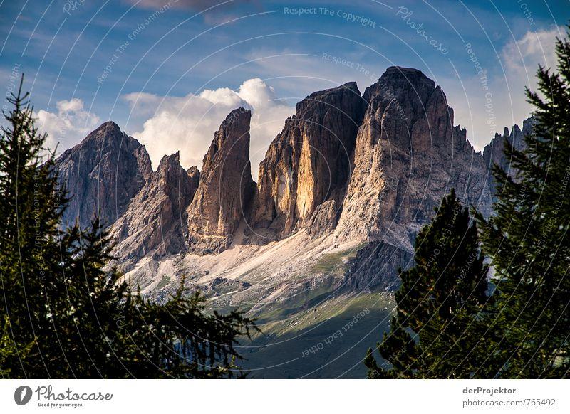 Spot an – Wanderung in den Dolomiten geht weiter Natur Ferien & Urlaub & Reisen blau Pflanze Sommer Baum Landschaft Freude Ferne Wald Umwelt Berge u. Gebirge