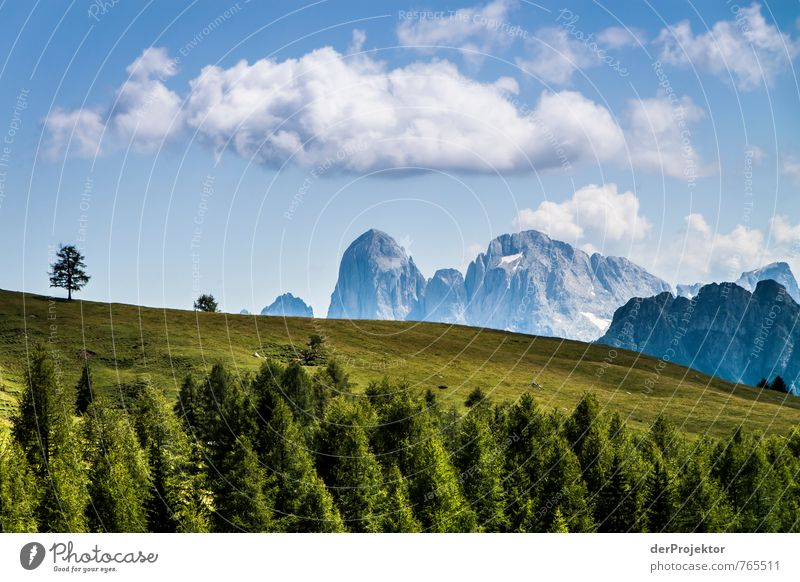 Grün-blau-weiß-Dolomiti Ferien & Urlaub & Reisen Tourismus Ausflug Berge u. Gebirge wandern Umwelt Natur Landschaft Pflanze Urelemente Wolken Sommer Baum Gras