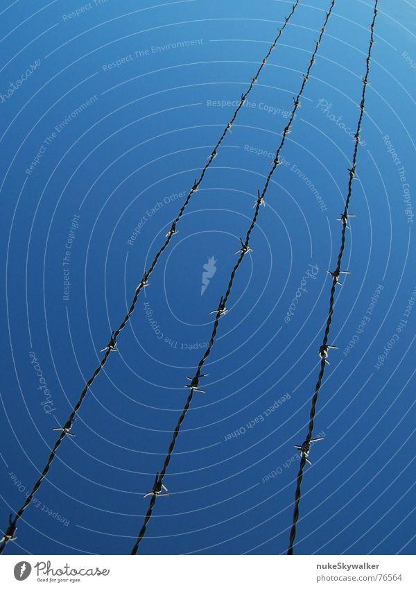 Die letzte Hürde Himmel blau Freiheit Linie 3 Grenze diagonal gefangen Stacheldraht Frauenheld