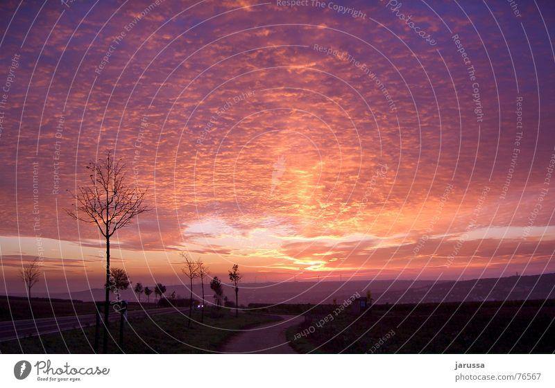 Sonnengruß Himmel Baum rot Wolken Straße violett Windkraftanlage Hügel Gewitter Abenddämmerung Scheinwerfer Tal