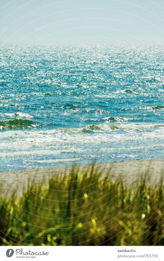Meer Erholung Ferien & Urlaub & Reisen göhren Horizont Küste Mecklenburg-Vorpommern Ostsee Strand See Wellen Wind Brandung Beginn Wasser Wasseroberfläche