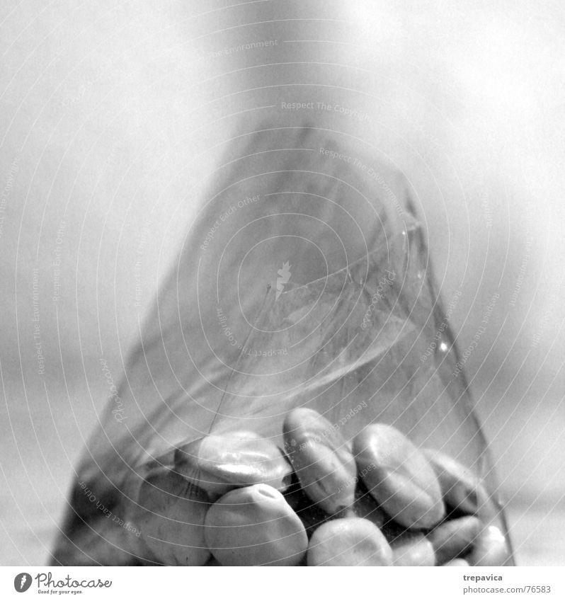 samen Herbst grau Pflanze Blume Plastiktüte Verpackung Haufen Versammlung aufeinander mehrere Sammlung Schwarzweißfoto Samen durchsichtig viele
