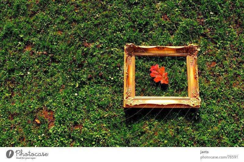 Herbstbild Blatt Wiese Gras Herbstlaub Bilderrahmen Kunst Rahmen eingerahmt jarts gold alt