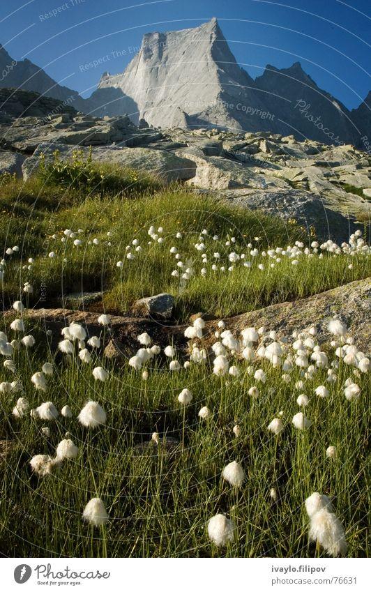 Piz Badile Sommer Schweiz Top