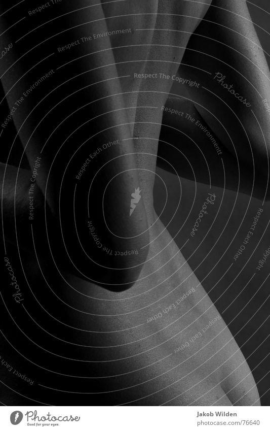 Kehrseite weich zart lieblich klein rund ruhig Rücken Seite Hinterteil Arme Detailaufnahme studioaufnahme vor dunklem hintergrund