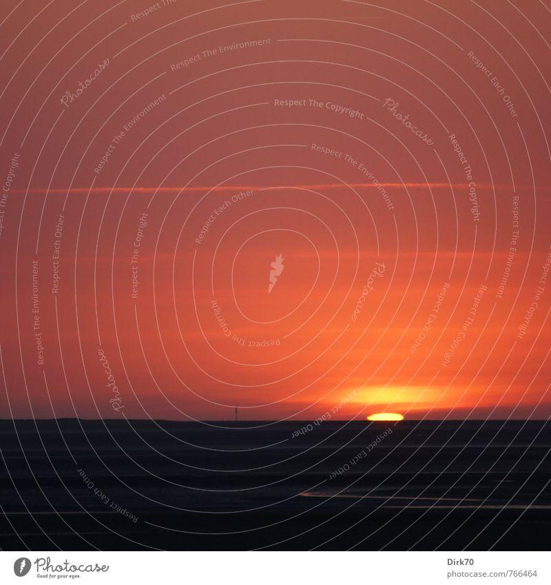 Sonnenuntergang über dem Watt Natur Sonnenaufgang Sonnenlicht Sommer Schönes Wetter Küste Strand Nordsee Meer Insel Wattenmeer Priel Neuwerk Schifffahrt Sand
