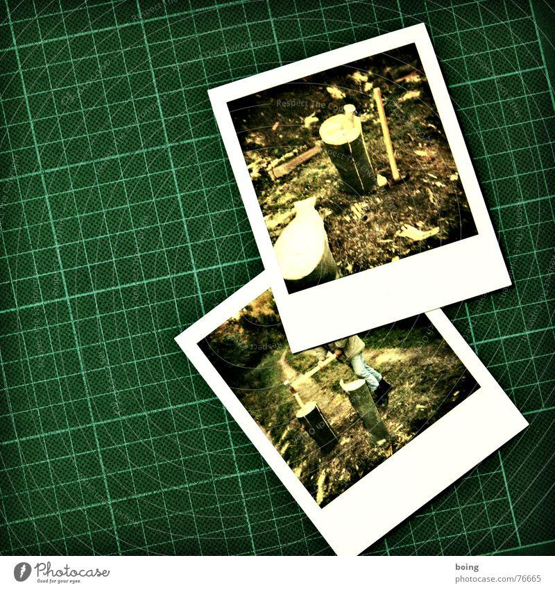 210l Heizöl/Rm Baumstamm Holz Wald Wege & Pfade Polaroid Keil Herbst Teilung fällen heizen Feuerstelle Arbeit & Erwerbstätigkeit Kraft Axt Säge Waldarbeiter
