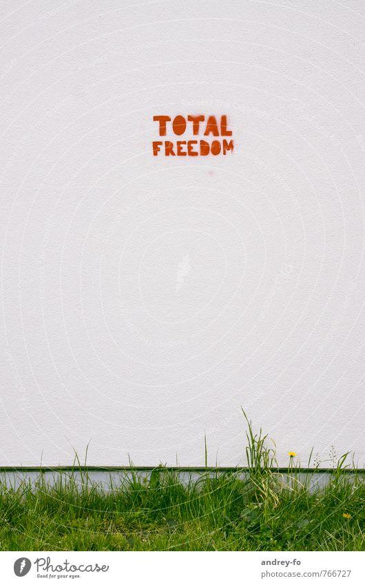 Total Freedom rot Wand Graffiti Gras Mauer Freiheit Stein Kunst Fassade frei Schriftzeichen Beton Kreativität Zukunft Kommunizieren Zeichen