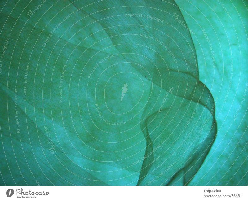 gruen I Licht Hintergrundbild Zärtlichkeiten leicht Seide Physik Tuch Wasser fliegen Farbe durchsichtig Schnur Strukturen & Formen Rauch Wärme touch schaal