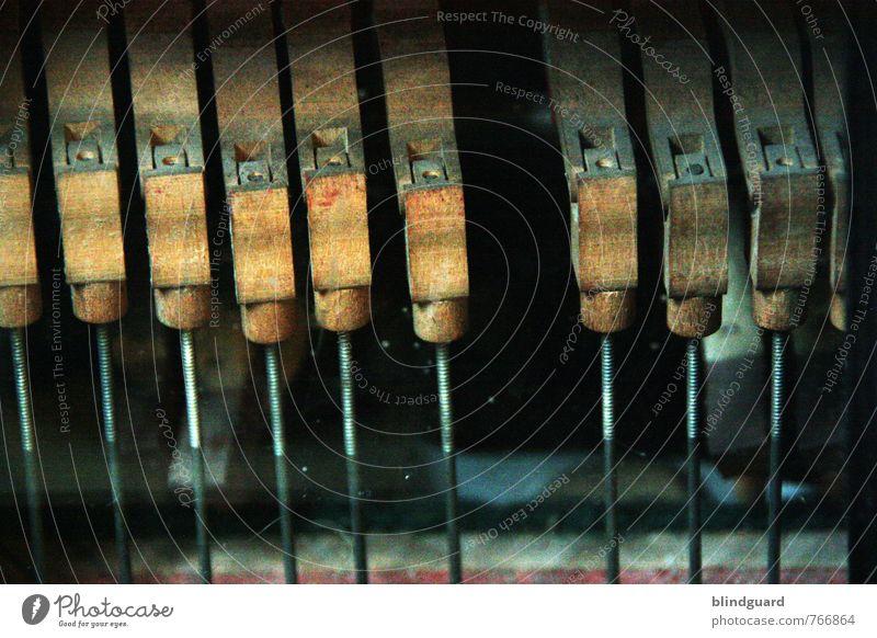 Missing Freizeit & Hobby Musik Holz Metall kaputt braun schwarz silber Vergänglichkeit Akkordeon Ton Handwerk alt Klaviatur Farbfoto Innenaufnahme