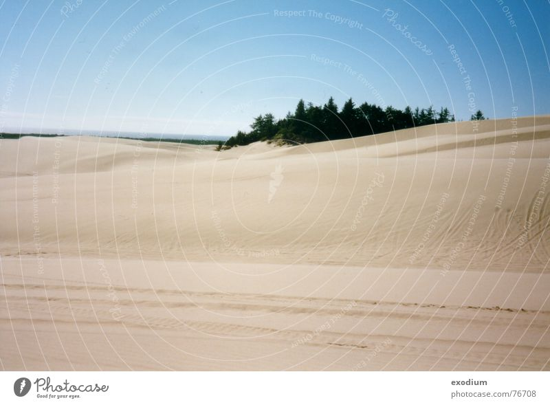 Sandwüste Wärme Landschaft Aussicht Wüste Physik