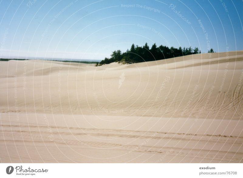 Sandwüste Wärme Sand Landschaft Aussicht Wüste Physik