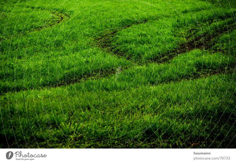 Tractose 3 Muster Feld Physik grün Gras tractor tracks shadows Schatten Spuren field Wärme Traktorspur