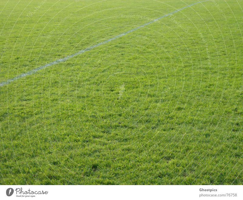 Weiß im Grünen weiß grün Gras Linie Fußball Rasen