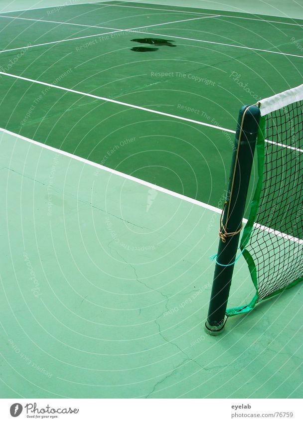 Malheur auf Tennisplatz Hund grün weiß gelb Sport Spielen See Linie springen Erfolg Hoffnung Netz Sportveranstaltung Missgeschick Urin