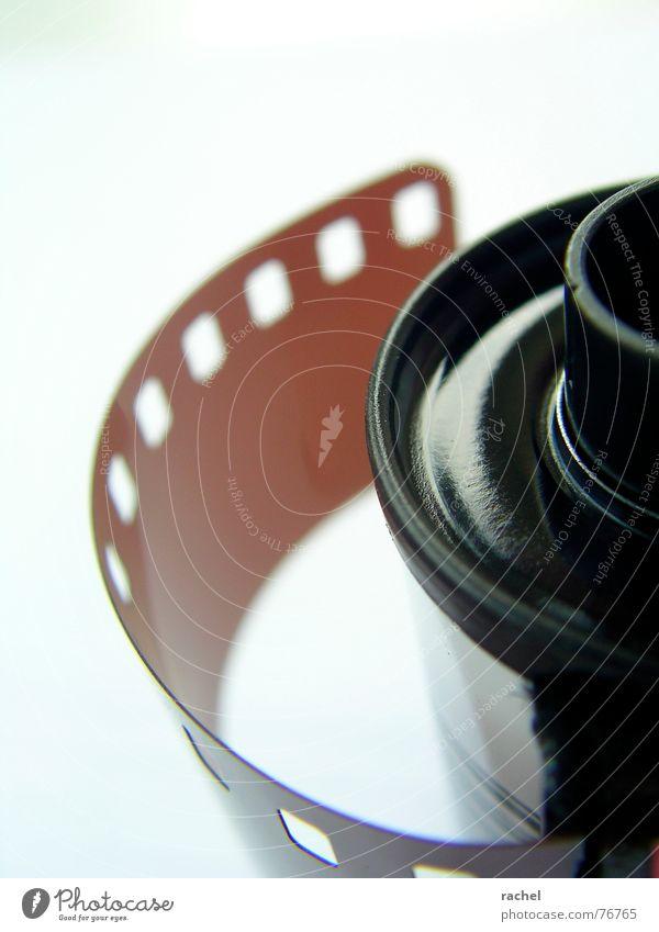 liebhaberstück analog Dose negativ Labor Entwicklung Fotografie Nostalgie Detailaufnahme Fototechnik farbfilm Druckerzeugnisse schöne erinnerung