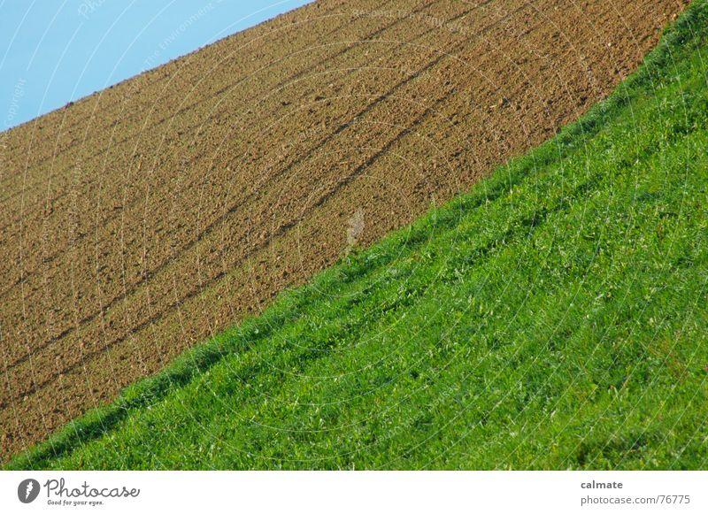 - agrarimpresionen I- Himmel grün blau Herbst Wiese braun Feld vorwärts Schönes Wetter kurz Farbenspiel