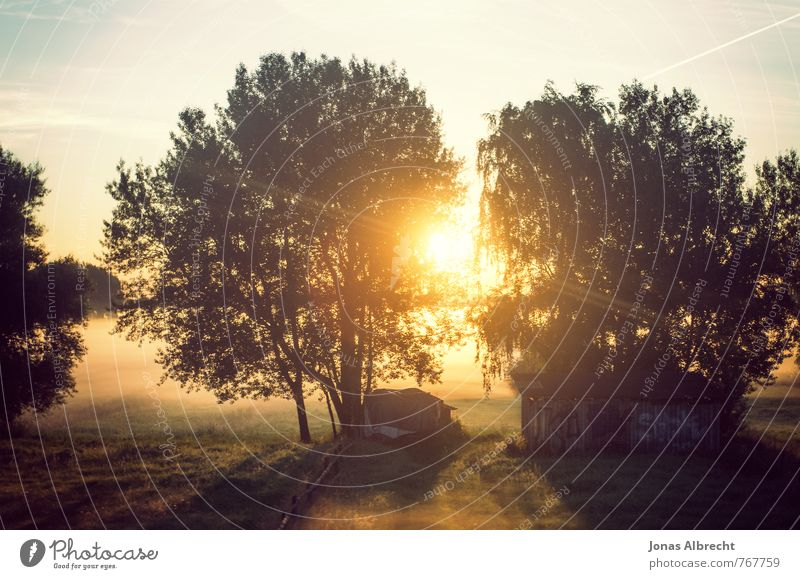 sonnenuntergang Sonnenuntergang sommer natur traum