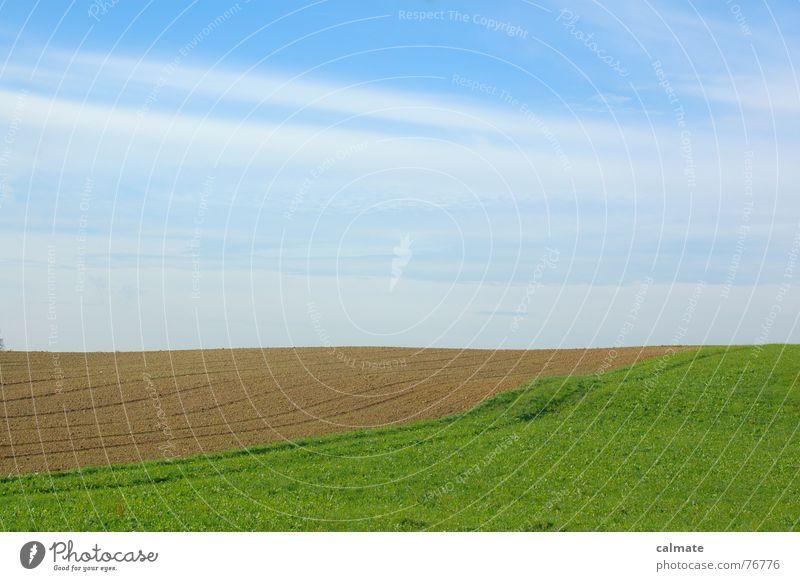 - agrarimpresionen II- Himmel grün Wolken Wiese Landschaft Feld Farbenspiel