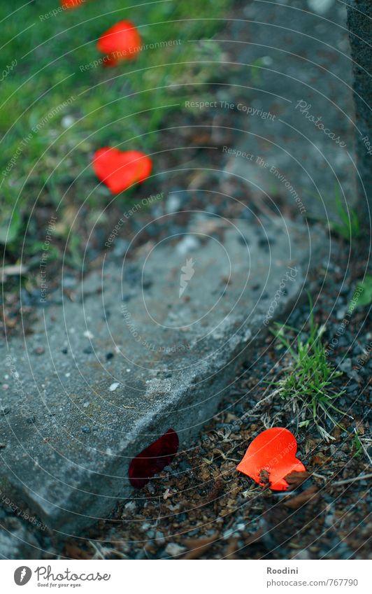 Auf und Ab der Gefühle Natur Traurigkeit Wiese Liebe Gras Glück Stein Garten Freundschaft Park Zusammensein Erde Dekoration & Verzierung Herz Romantik Hochzeit
