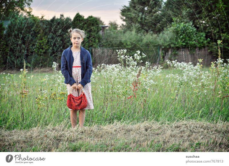 hm... Mensch Kind Natur Sommer Hand Mädchen Gesicht Umwelt Leben Wiese feminin Gras Haare & Frisuren Kopf Beine Körper