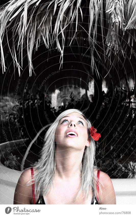 Hans guck in die Luft Frau Himmel schön rot Sonne Ferien & Urlaub & Reisen Sommer Blume Gesicht Graffiti oben Wärme hell Regen Mund offen