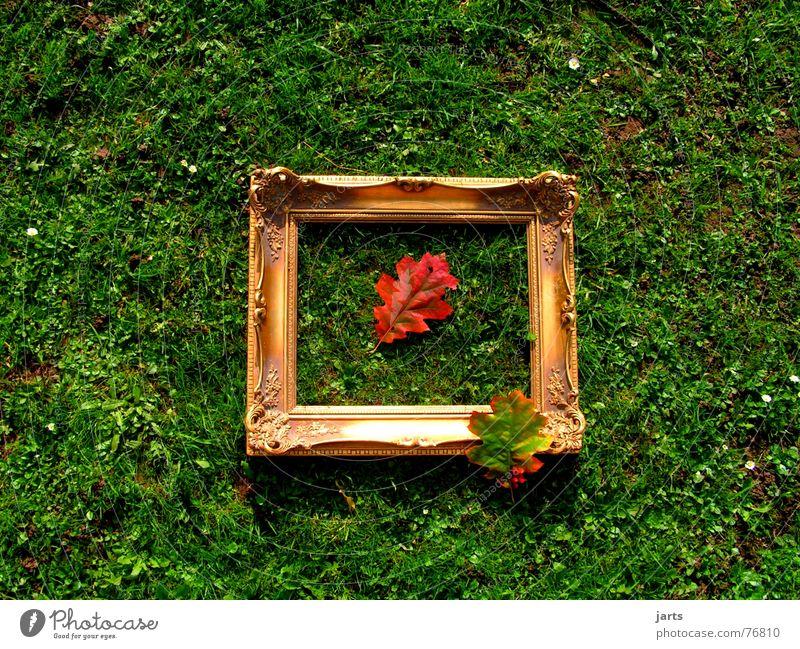 Herbstbild II Herbstlaub Blatt Bilderrahmen Wiese mehrfarbig Gras Rahmen gold jarts