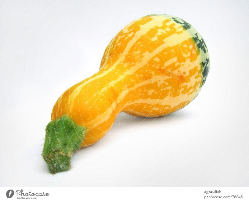 Zierkürbis gelb Kochen & Garen & Backen Gemüse Halloween Kürbis Kalebasse Flaschenkürbis
