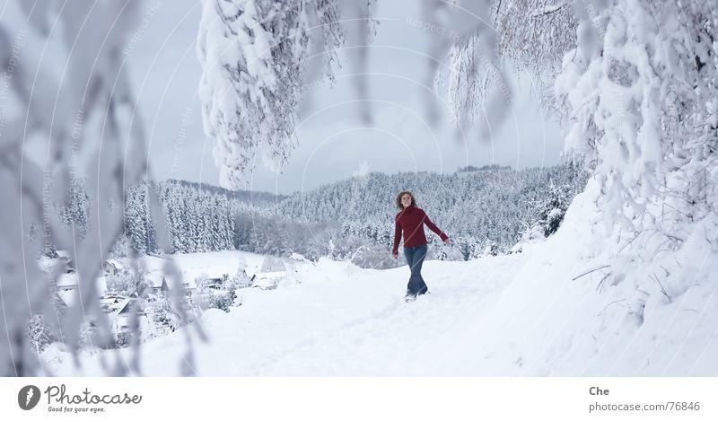 Die Welt als Märchen Frau schön Baum rot Freude Winter Wald kalt Schnee Spielen lachen Tanzen Aussicht weich Dorf Tanne