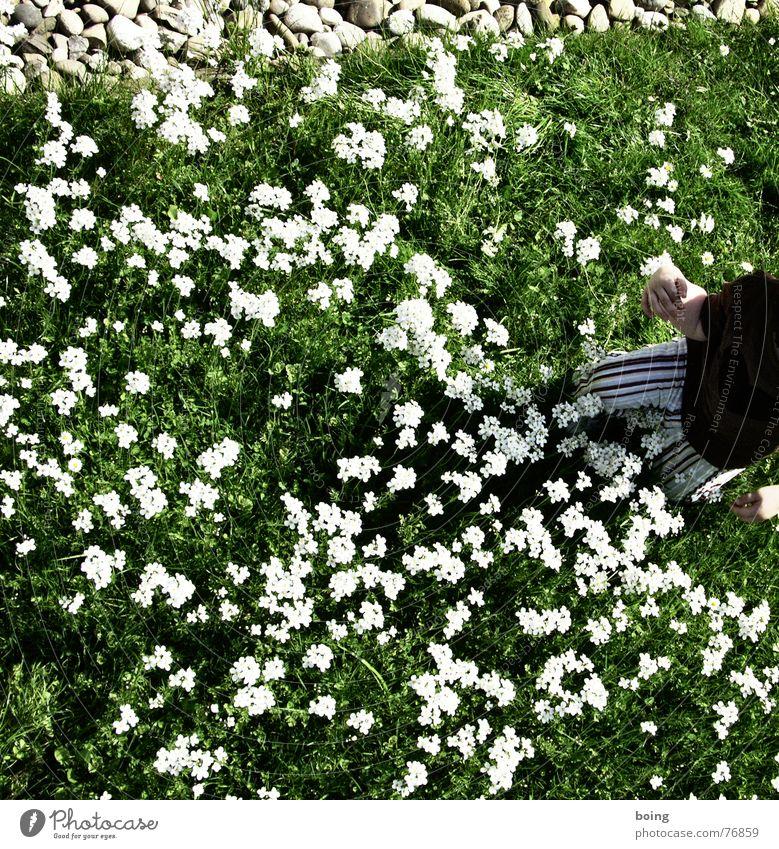 eindeutig heile Welt Kind Blume Wolken Freude Frühling Wiese frisch Muttertag Zen Wiesenblume Buddhismus Wiesen-Schaumkraut Bildsprache