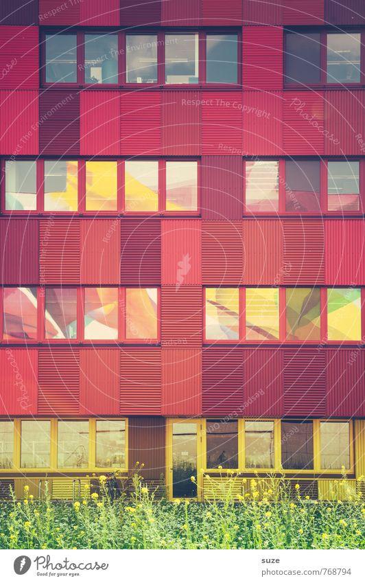 Farbe bekennen Stadt rot Fenster Wiese Architektur Gebäude Stil außergewöhnlich Arbeit & Erwerbstätigkeit Gesundheitswesen Fassade Lifestyle Business Design