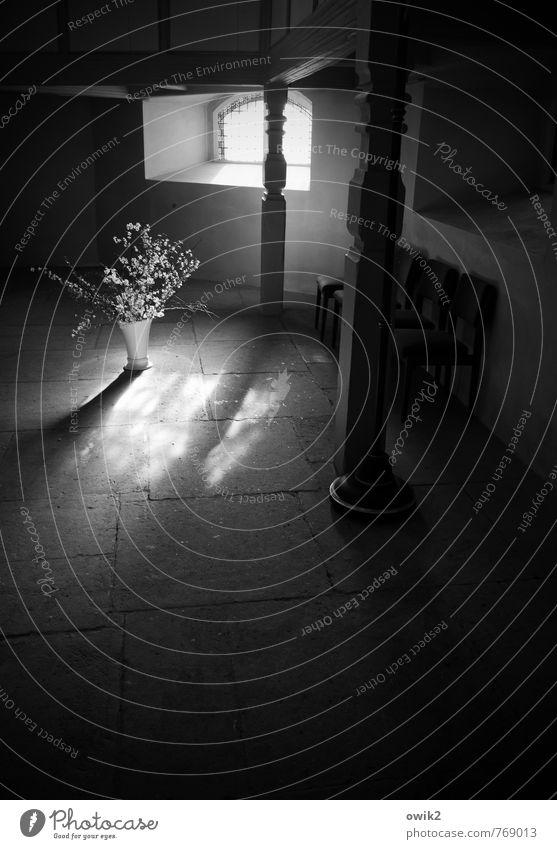 Dankgebet Blume ruhig dunkel Wand Mauer außergewöhnlich Stein Raum Kirche Hoffnung Stuhl Glaube rein Gelassenheit Blumenstrauß Säule
