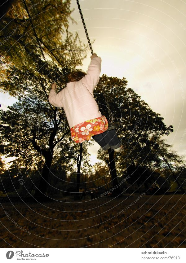 schaukeln Kind Freude Blatt Wald Herbst springen Spielen Alkoholisiert Kette Schaukel Spielplatz